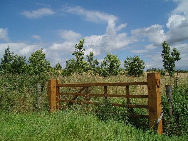 Gate in Hillcrest Paddock