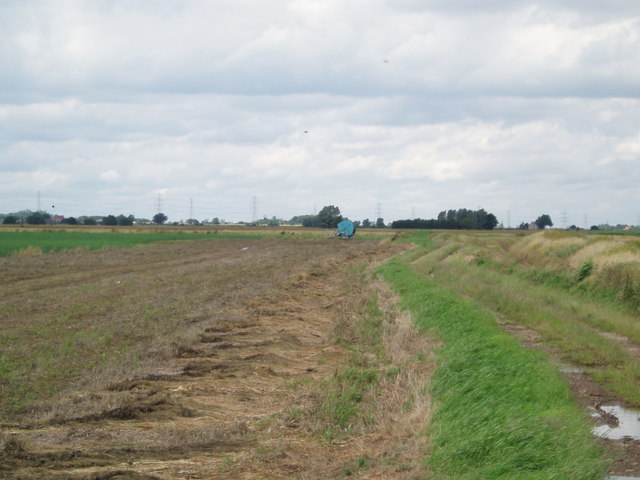Field lane and Drain