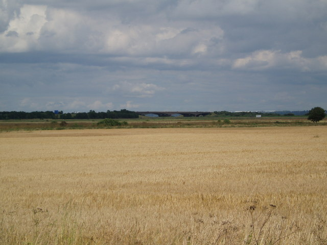 Fields towards the M180