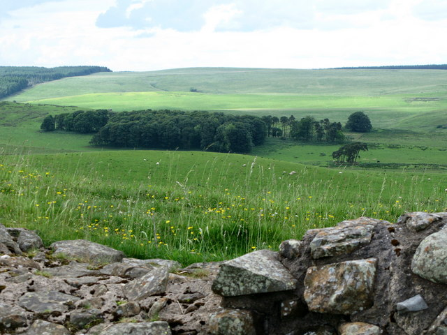 Pastures north of Hadrian's Wall near Milecastle 35
