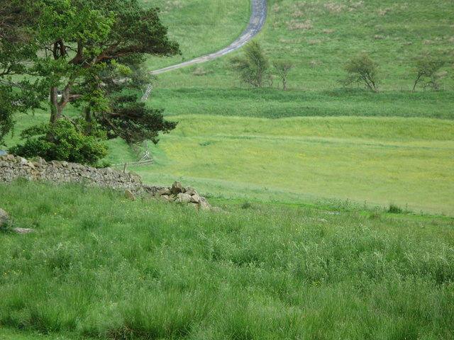 Wood, pastures, and the Vallum