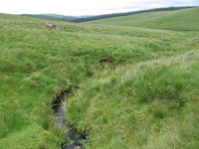 Respie Grain and small enclosure on Threep Moor