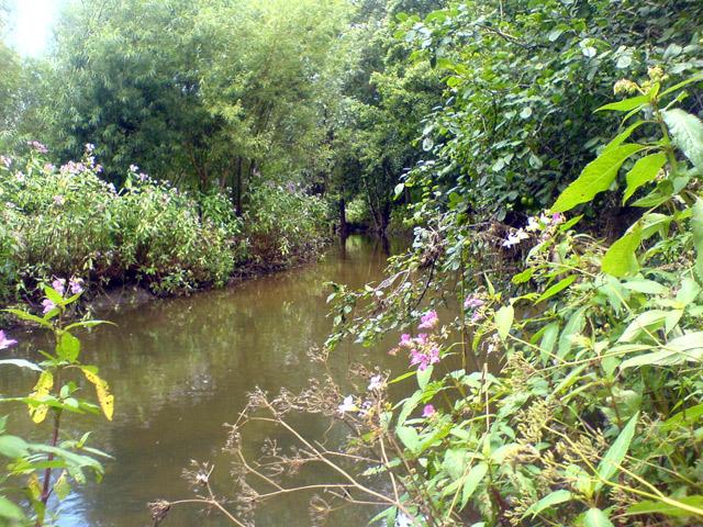 River Maun, near Snake Hill