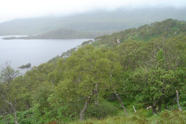 Native Woodland at Doire Dhuibh