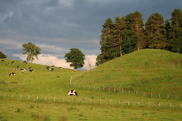 Farmland Little Salkeld
