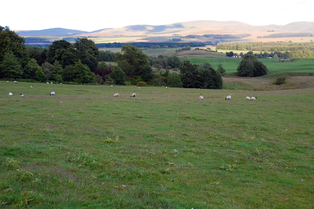 Field on the Cromlix Estate