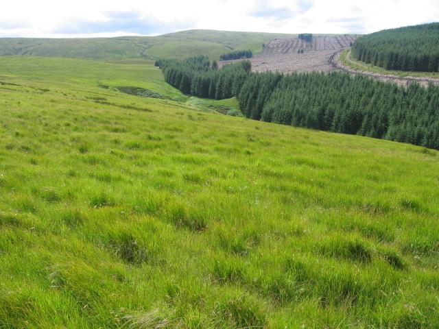 Whiteside Hill towards Threep Moor