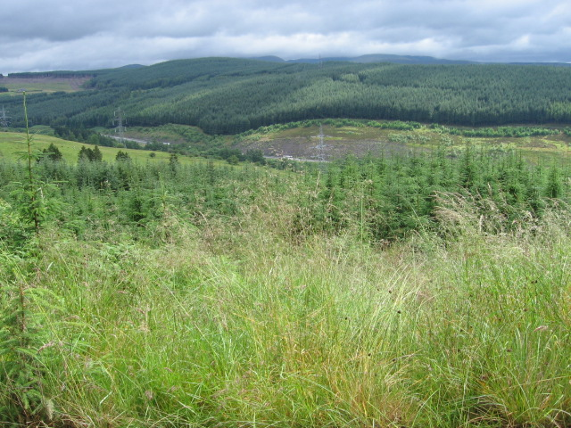 Across Greskine Forest towards A74(M)