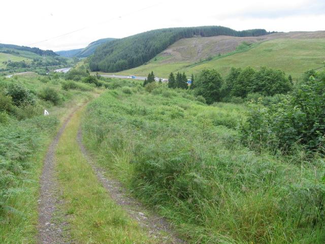 Track in Greskine Forest