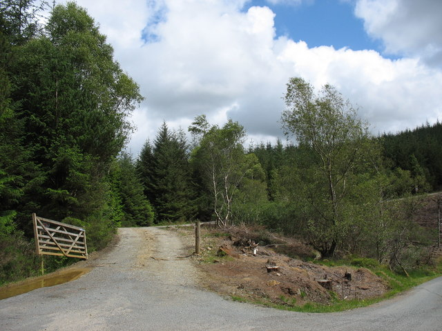 Forestry road serving the Mynydd Cwm-heisian Forest