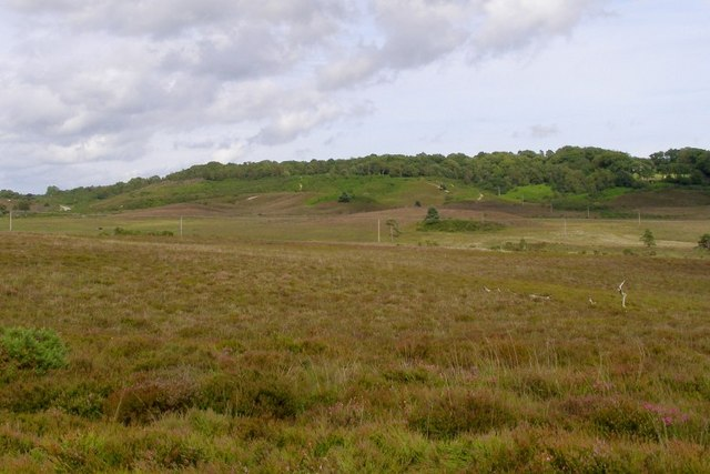 View towards Castle Hill from the west, New Forest