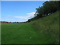 NZ4053 : Green area between Grangetown and Ryhope by Graham Scarborough