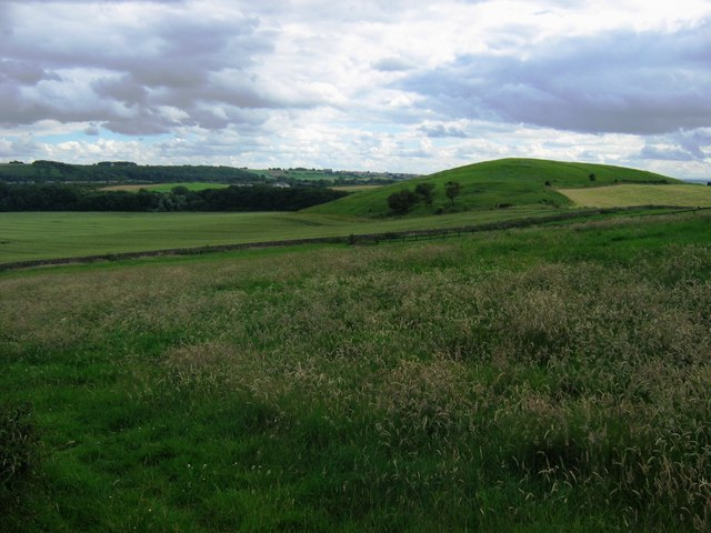 Carr Hill