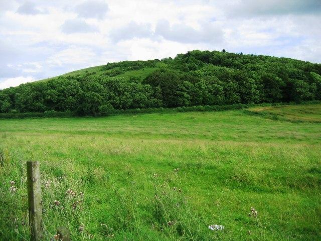Herrington Hill