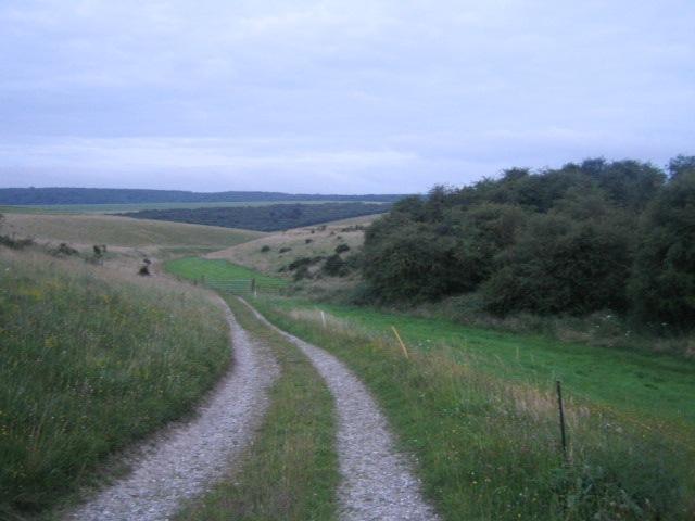 Tytherington Down near Tytherington