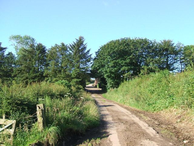 Road to Adziel Farm