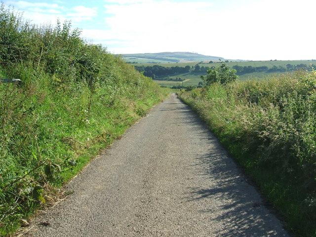 Road from Adziel FArm