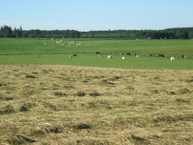 Farmland at Milton of Auchorthie
