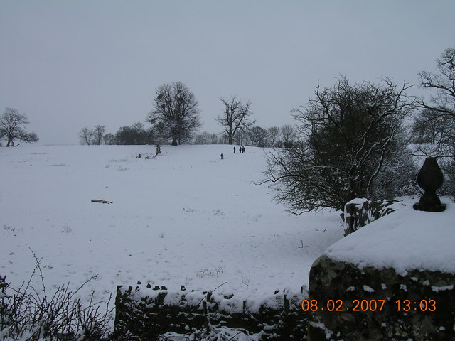 kids young & old enjoying snow