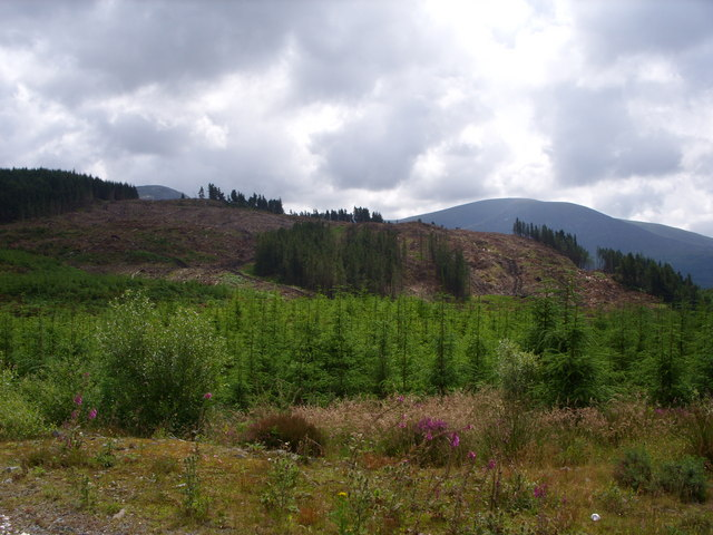 Craigloom hill