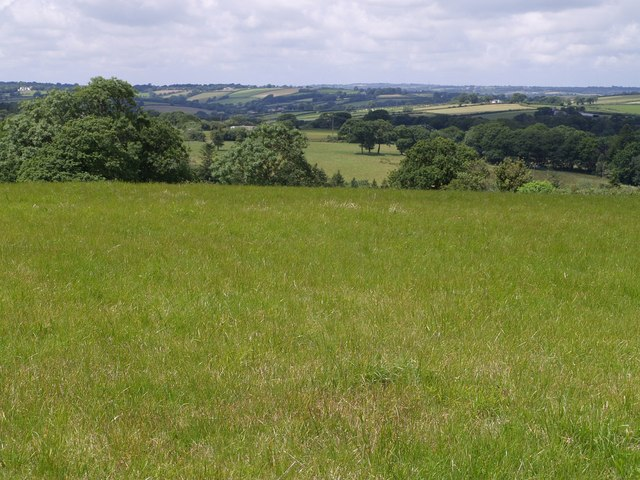 Fields south of Black Torrington