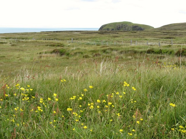Moorland on the Eye Peninsula