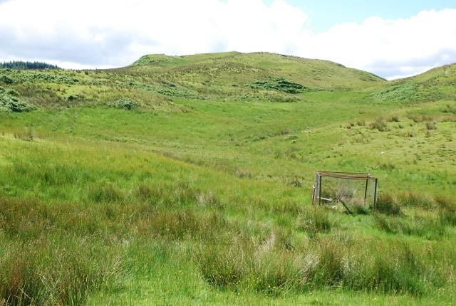 Rough grazing above Ardchonnel