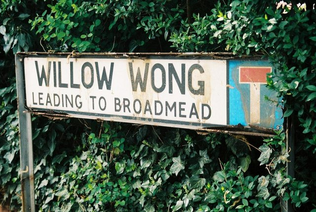 Willow Wong, Burton Joyce