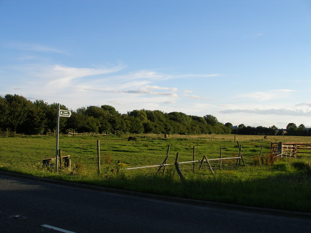 Footpath across grazing land