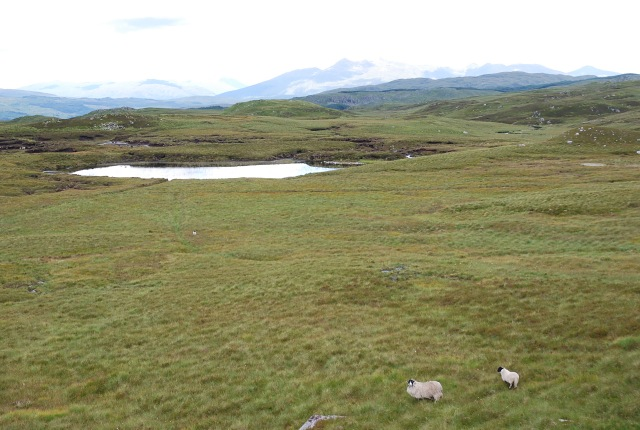 Moorland and unnamed lochan