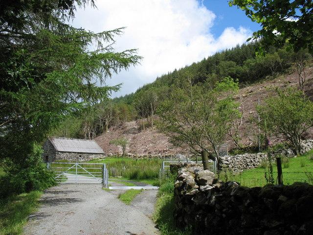 A cattle grid and barn beyond Hafod Fraith