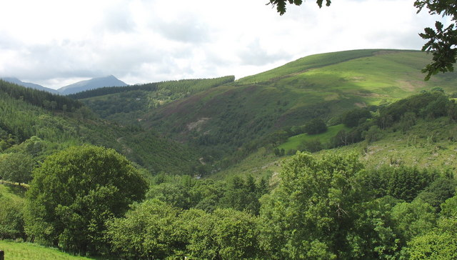 The Mawddach trench from the Hafod Fraith road
