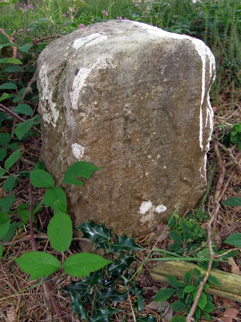 Parish boundary marker on Knaves Ash barrow, New Forest