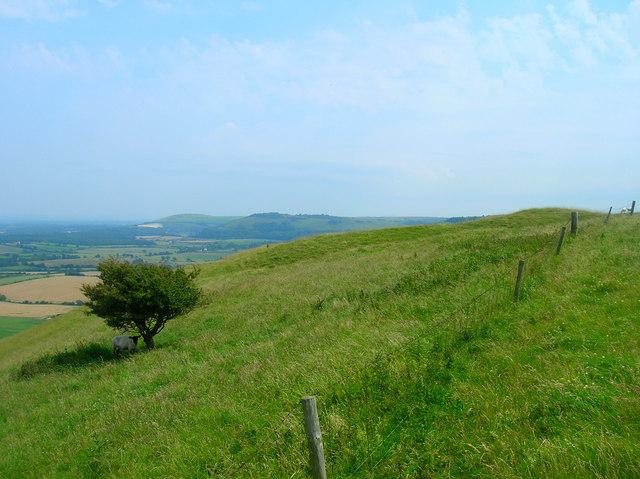 Castle Rings, Edburton Hill