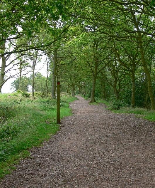 Footpath at Kinver Edge