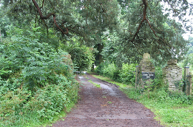 Driveway to Great Giles Farm