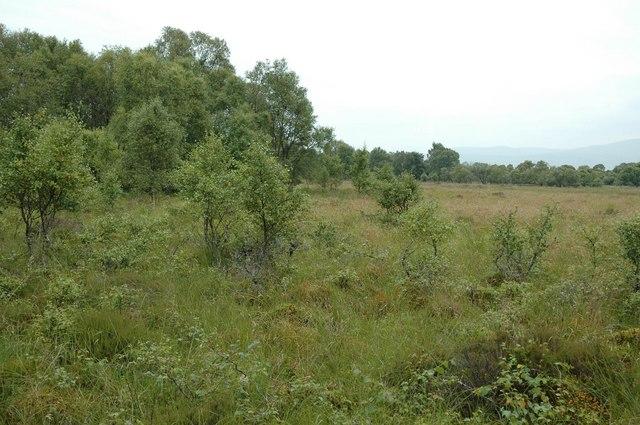 East of Mungrisdale village