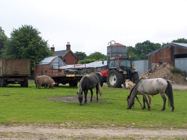 Farm by Moor Bridge, Furzley