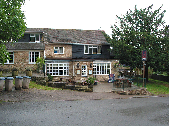 The Yew tree, Clifford's Mesne