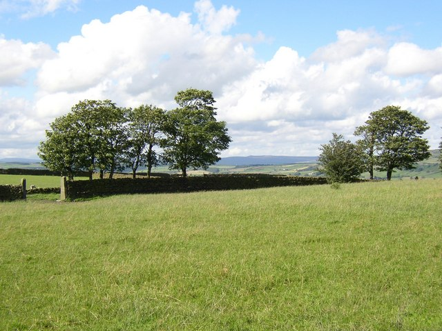 Field and view, Keighley Tarn, Keighley