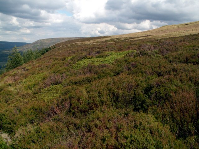 Bramah Edge looking east