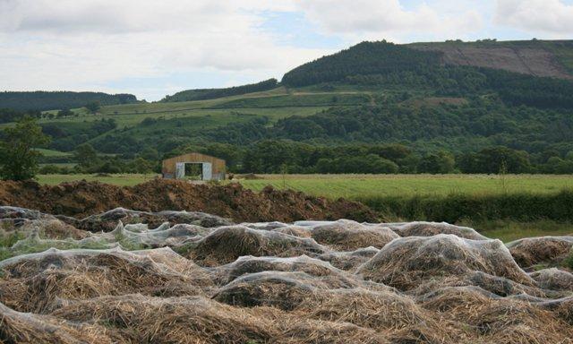 Cobwebs on a Manure Heap