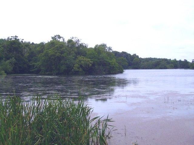 Bowlam lake island