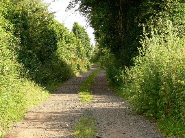 Lane near Low Habberley Farm