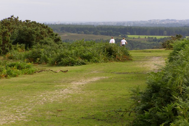 Smugglers' Road, Vales Moor, New Forest