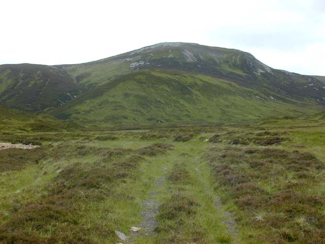 Track near the Allt Connie