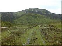 NO0685 : Track near the Allt Connie by Nigel Brown