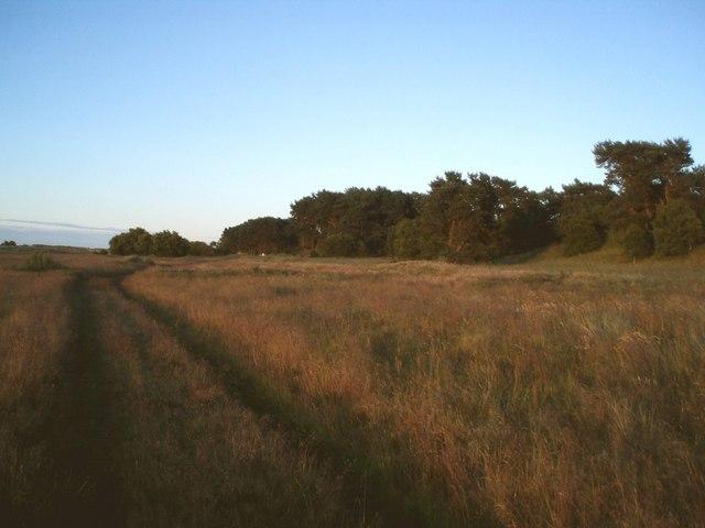 Track alongside Barry Ridge.
