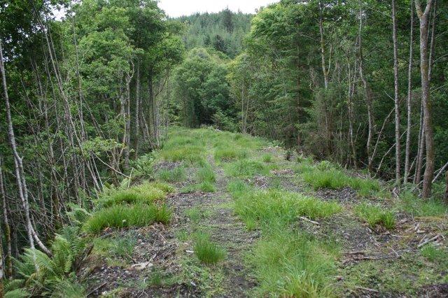 Railway Embankment on Ballachulish Line