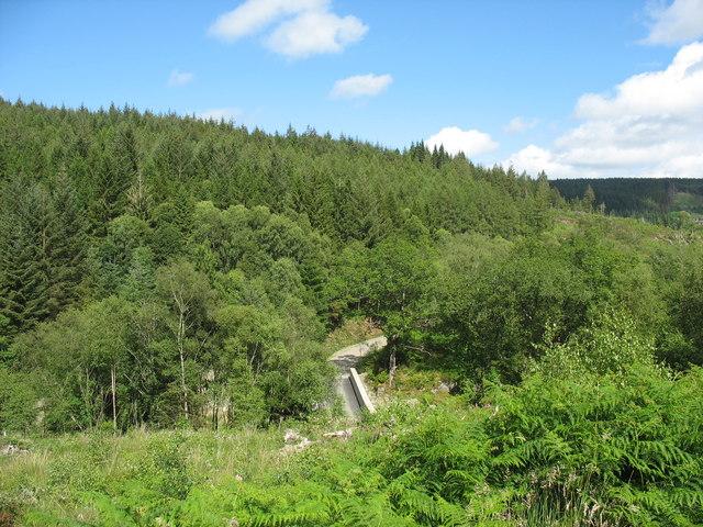 Overlooking Pont Gwynfynydd
